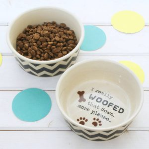 dog water and food bowl