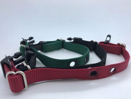 "3/4"" Dogfence collar strap"